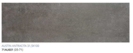 Grespania Austin Antracite 31.5 x 100, € 41,50 pm2