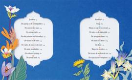 Arabische Sprookjes - Rodaan Al Galidi & Geertje Aalders - Gottmer