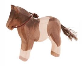 Ostheimer Houten Pony