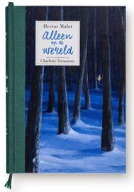 Alleen op de Wereld - Hector Malot & Charlotte Dematons - Gottmer