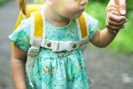 Blafre rugzak voor peuters 1-4 jaar, blauwgroen