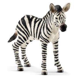 Schleich Zebra jong - 14811