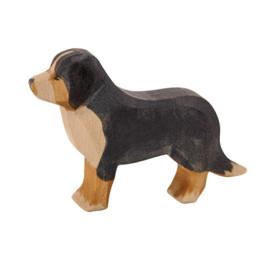 Ostheimer Houten Berner Sennenhond
