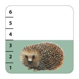 Djeco kaartspel Batanimo
