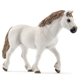 Schleich Welsh Poney - 13872