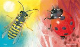 Klein insectenboek - Loes Botman - Christofoor