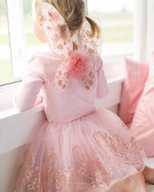 Tule rok met vleugels, roze/goud, 4-7 jaar