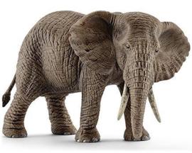 Schleich Afrikaanse Olifant, Vrouwtje - 14761