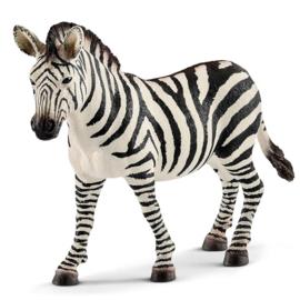 Schleich Zebra Merrie - 14810