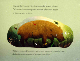 Dieren op reis - Patricia Hegarty - Veltman