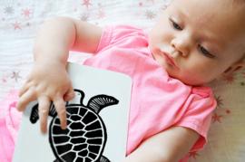 Wee Gallery Kijkkaarten, Baby Art Cards Ocean