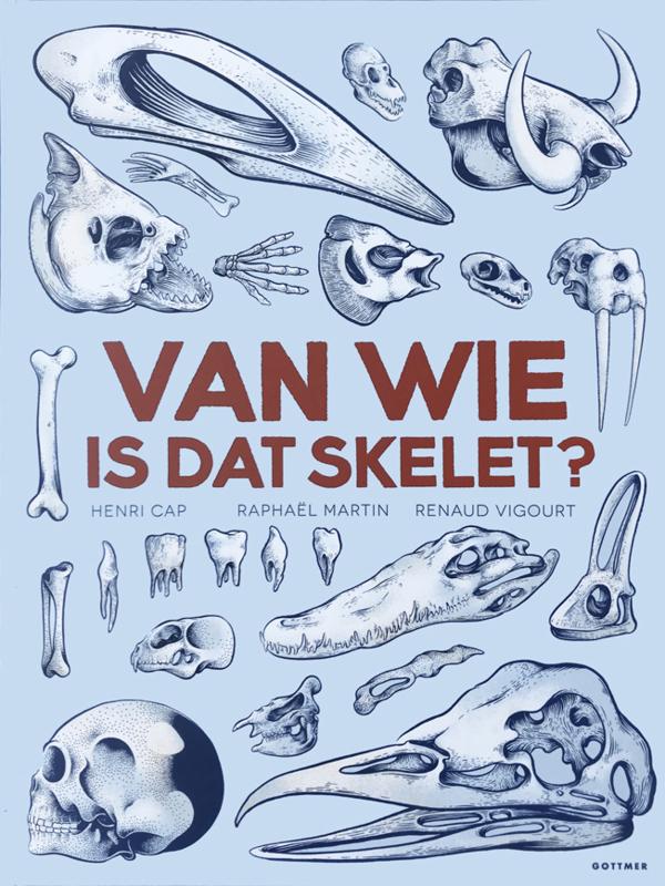 Van wie is dat skelet - Henri Cap - Gottmer