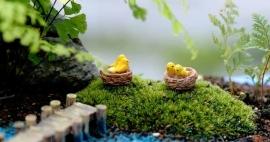 Miniatuur Vogel nestje