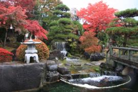 Koimuseum Ojiya_Img-0829
