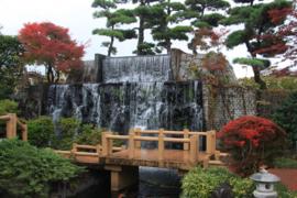 Koimuseum Ojiya_Img-0836_3