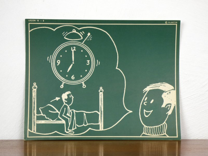 vintage schoolplaat Plantyn les 168