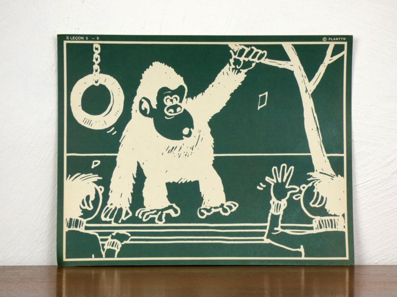 vintage schoolplaat Plantyn les II 56