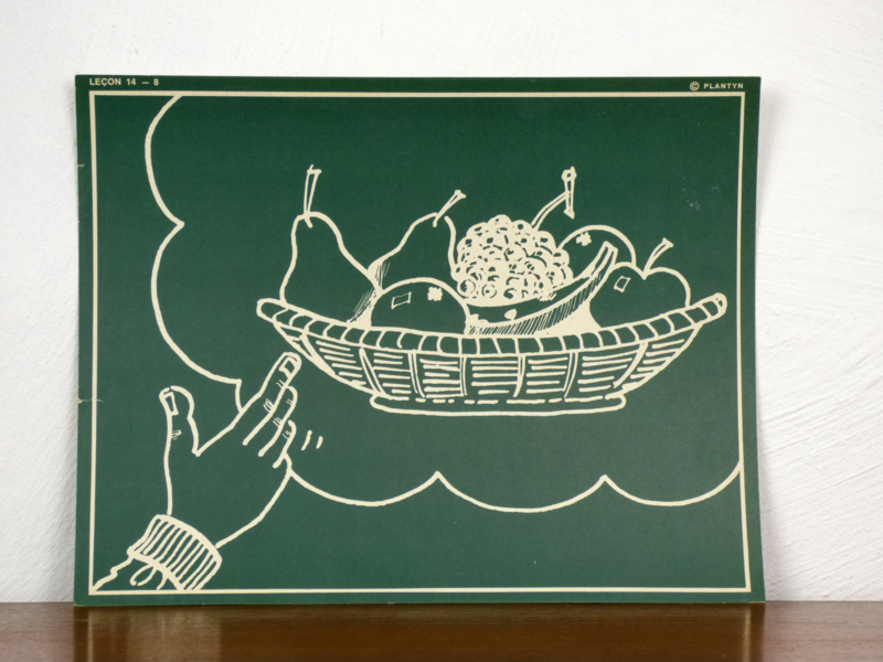 vintage schoolplaat Plantyn les 148
