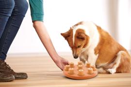 Nina Ottosson - Outward Hound Dog Smart composiet