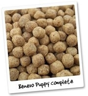 Benevo Puppy