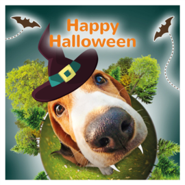Happy Halloween kadobox voor de hond