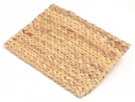 Rosewood Chill 'n Chew mat