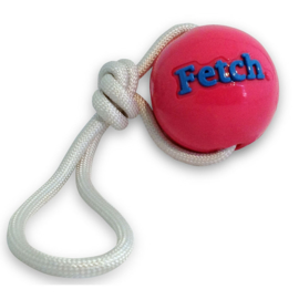 Planet Dog Orbee Tuff Fetch bal