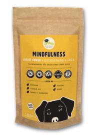 Eat small Mindfulness