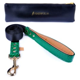 Friendshipcollar hondenriem Emerald Green