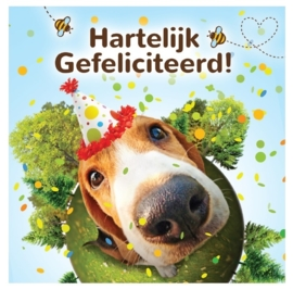 Kadobox Happy Birthday voor de hond