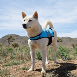 ZippyPaws Adventure cooling vest