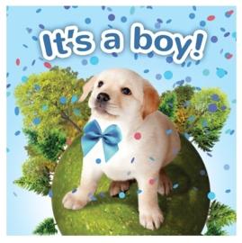 Kadobox Puppy 'It's a Boy'