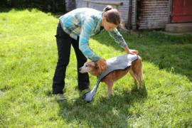 EQdog Cool Dog - koelvest voor de hond