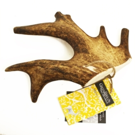 Fallow Antler Medium