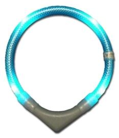 Leuchtie PLUS lichthalsband Turquoise