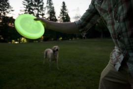 Zogoflex Zisc hondenfrisbee