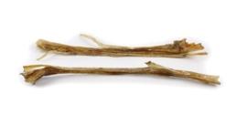 Struisvogel pezen lang - per stuk