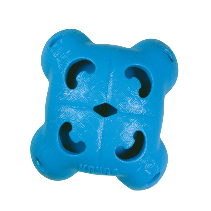 Kong Quest Foragers - Quad blauw