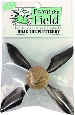 From the Field Shae the Flutterby