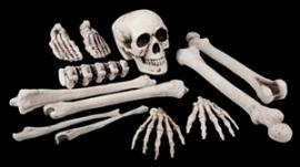Zak met 12 botten (DKW 023-015)