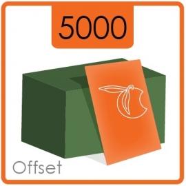 Visitekaartjes klassiek  -  formaat 8,5 x 5,5 cm  -  enkelzijdig  4/0 Kleur -  Materiaal 350g druk mat  - 5000 Stuks.