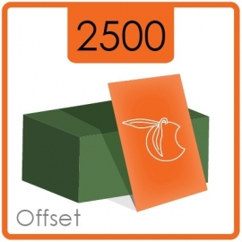 Visitekaartjes klassiek  -  formaat 8,5 x 5,5 cm  -  enkelzijdig  4/0 Kleur -  Materiaal 350g druk mat  - 2500 Stuks.