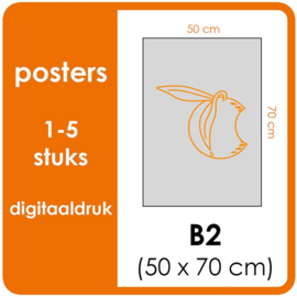 B2 Posters - prijsgroep voor 1 t/m 5 stuks. Print Formaat: 500mm x 700mm. Posterpapier: PrimeArt Semi-Gloss 200 gm² (Prijs Per stuk)