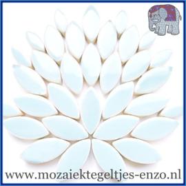 Keramische mozaiek steentjes - Petals Bloemblaadjes Normaal - 14 en 21 mm - Enkele Kleuren - per 50 gram - Ice Blue