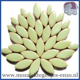 Keramische mozaiek steentjes - Petals Bloemblaadjes Normaal - 14 en 21 mm - Enkele Kleuren - per 50 gram - Peppermint