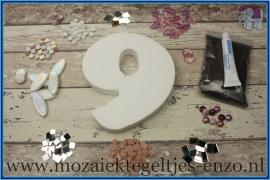 Mozaiek Kant & Klaar Pakket Piepschuim Huisnummer Groot - Cijfer 9 Roze
