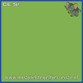 Buiten tegel Cesi - Mat Glanzend - 20 x 20 cm - per 1 stuk  - Op bestelling - Kiwi