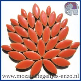Keramische mozaiek steentjes - Petals Bloemblaadjes Normaal - 14 en 21 mm - Enkele Kleuren - per 50 gram - Wild Salmon