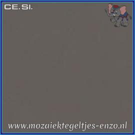 Buiten tegel Cesi - Mat Glanzend - 20 x 20 cm - per 1 stuk  - Op bestelling - Antracite