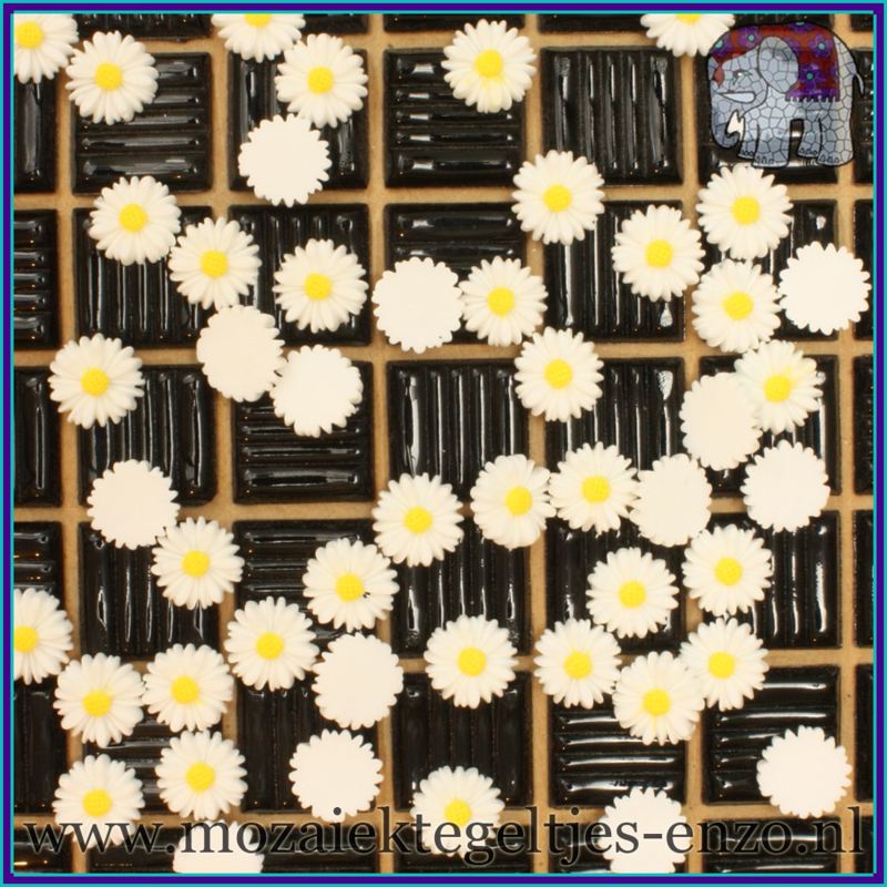 Cabochon hars plaksteen - Platte onderkant - Unlimited edition - per 1 stuk - Margriet (2)